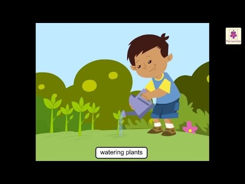 Importance of water | science for kids | grade 2 | periwinkle