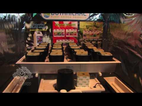 Welcome to igrow oakland hydroponics