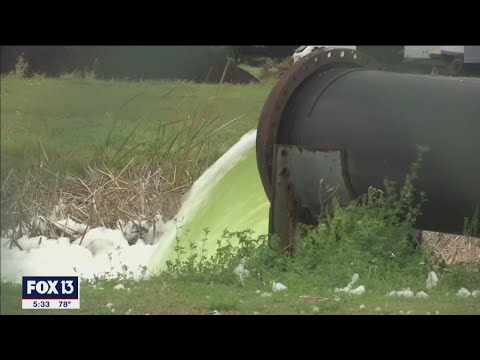 Who's to blame for the piney point wastewater mess -- and its $200m price tag?