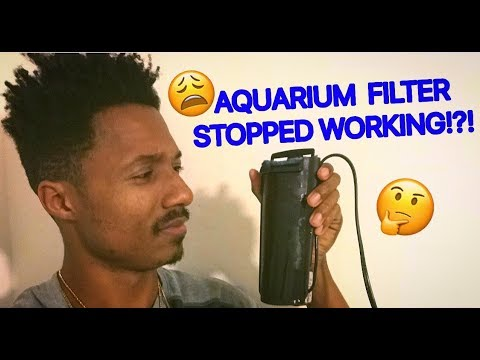 How to fix an aquarium filter that stops working!!!