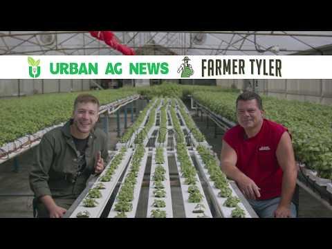 Urban ag news talks organic hydroponics with brett elliott, farm manager at elliott gardens