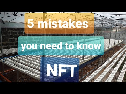 5 important things in nft hydroponics system