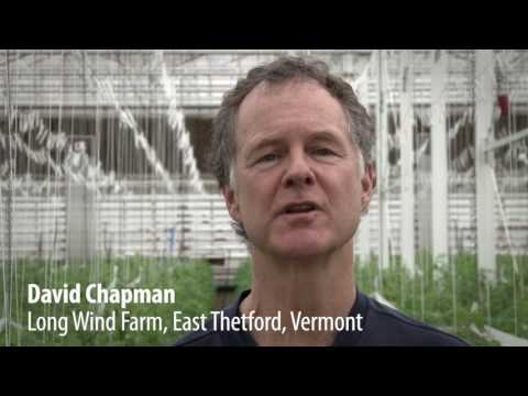 """David chapman on """"soil and hydroponics in organic"""" (organic producers conference, england)"""